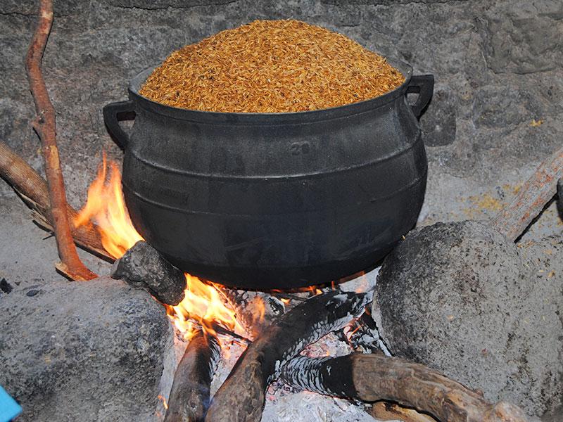 Transformation agroalimentaire - étuvage du riz