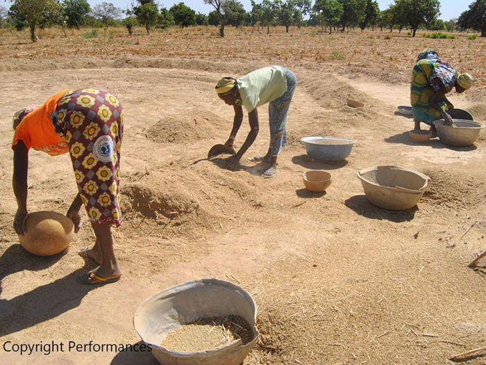A Kaya - femmes égrainent le mil après la récolte